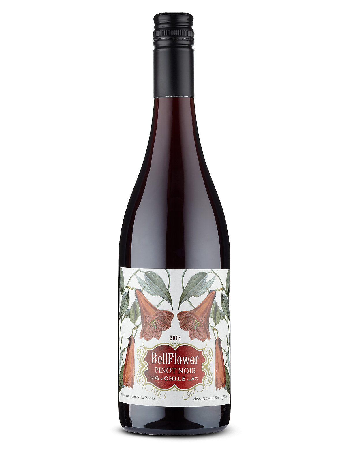 Bellflower Pinot Noir Case of 6