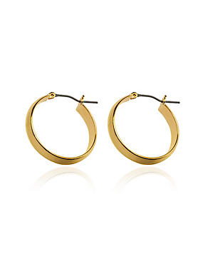 Gold Plated Simple Hoop Earrings, , catlanding
