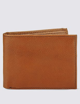 Removable Credit Card Billfold wtih ID, TAN, catlanding