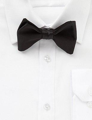 Pure Silk Bow Tie, BLACK, catlanding
