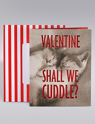 Valentine's Cards For Cat Lovers - Kittens cuddling