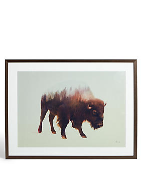 Bison Wall Art, , catlanding