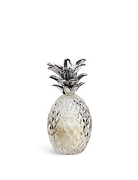 Glass Pineapple Candle, , catlanding
