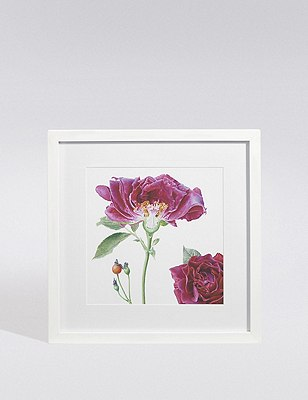 Rose Wall Art, , catlanding
