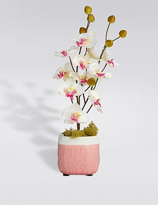 Artificial Mini Crackle Pot Orchid, , catlanding