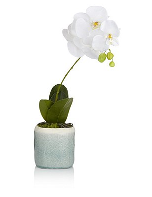 Artificial Large Crackle Pot Orchid, , catlanding