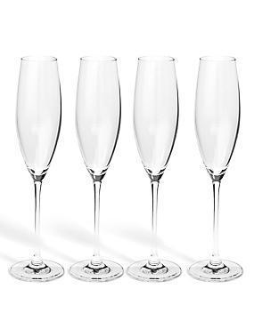 Sommelier  4 Pack Champagne Flutes, , catlanding