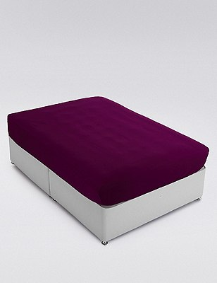 Non-Iron Egyptian Cotton Fitted Sheet, DAMSON, catlanding