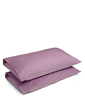 2 Pack Cotton Rich Percale Pillowcase, WINE, catlanding