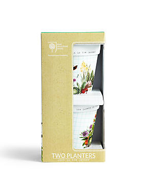 Set of 2 Planters, , catlanding
