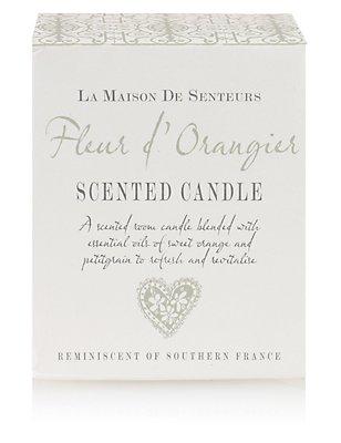 Fleur d' Orangier Candle, , catlanding