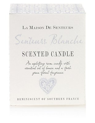 Blanche Candle, , catlanding