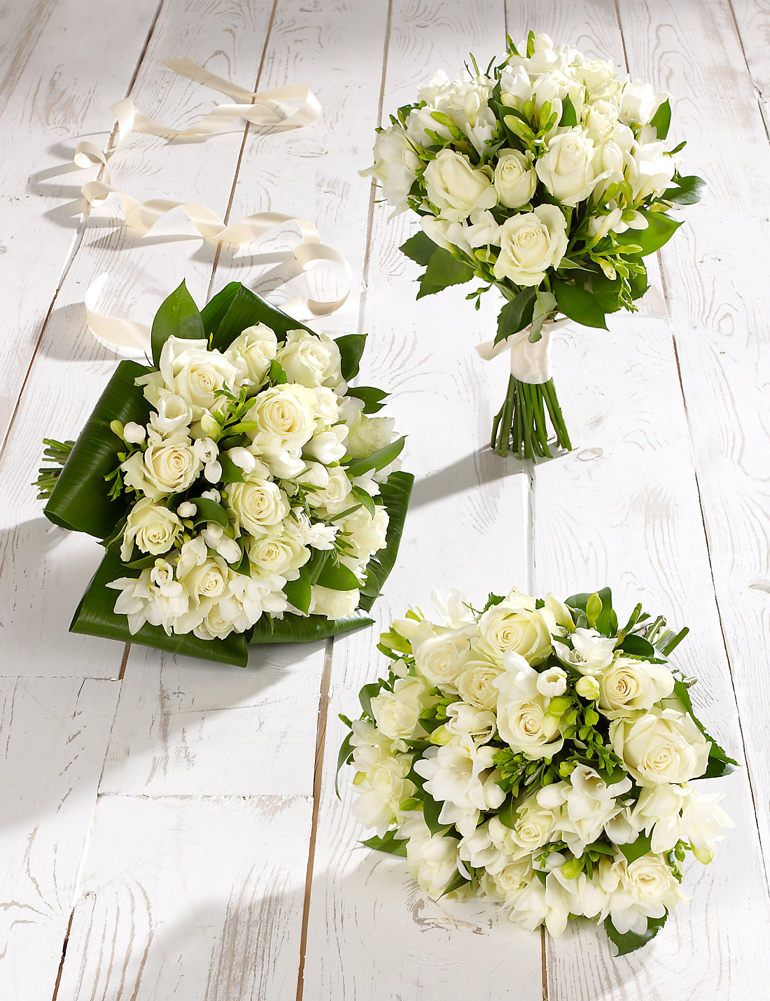 white rose  freesia wedding flowers  collection   ms, Beautiful flower