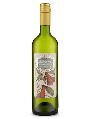 Bellflower PG Colchagua Valley - Case of 6 Wine