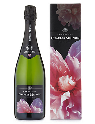 Champagne Charles Mignon 'Hymne à l'Amour' - Single Bottle Wine