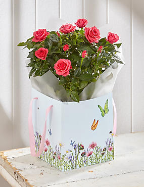 Mother's Day Radiant Rose Gift Bag