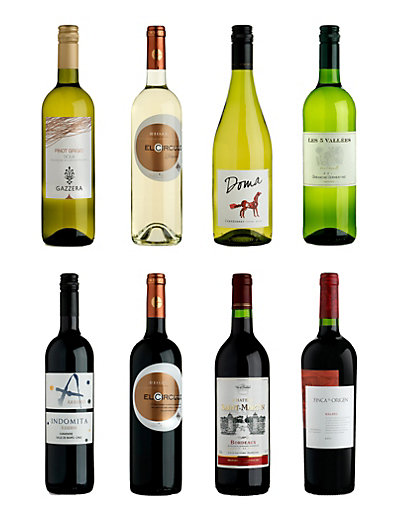 Newbie Selection - Case of 12 Wine