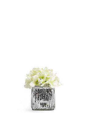 Lit Hydrangea in Mercury Cube Vase, , catlanding