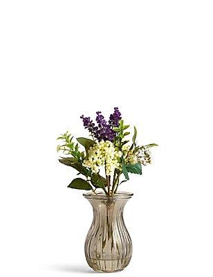 Lavender & Berry in Vase, , catlanding