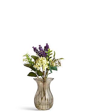 Lavendel und Beeren in Vase, , catlanding