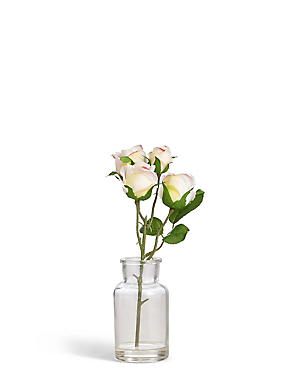 Rose Bunch in Bottle, , catlanding