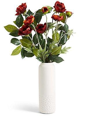 Wild Poppy in Ceramic Vase, , catlanding