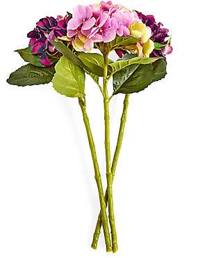 Ramo de hortensias, , catlanding
