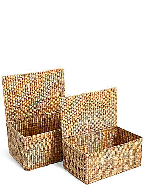 Water Hyacinth Set of 2 Trunks, , catlanding