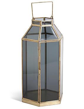 Große Dämmerungs-Lanterne, , catlanding