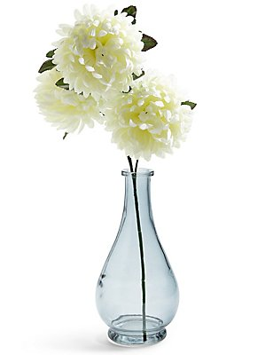 Chrysanthemum in Vase, , catlanding
