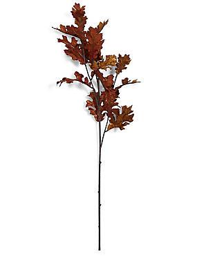 Oak Leaves Stem, , catlanding