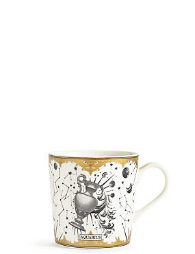 Aquarius Zodiac Mug, , catlanding