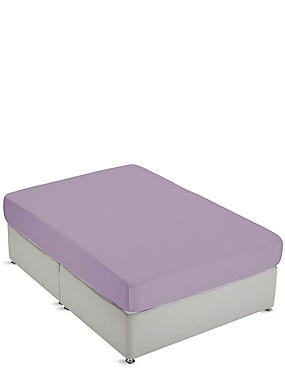 Non-Iron Pure Egyptian Cotton Deep Fitted Sheet, LILAC, catlanding