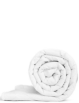 Wool Duvet 360GSM, NATURAL, catlanding