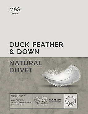 Duck Feather & Down 4.5 Tog Duvet, WHITE, catlanding