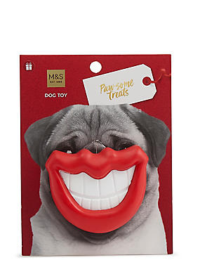 Dog Toy Smile, , catlanding