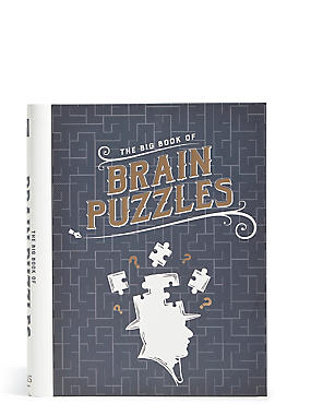 The Big Book of Brain Puzzles, , catlanding
