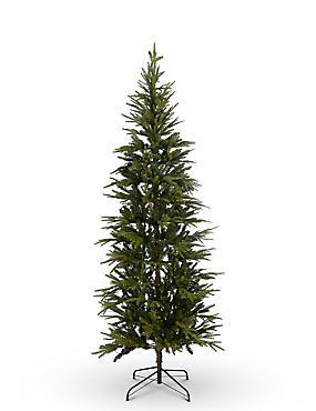 7Ft Fraser Fir Slim Lit Tree, , catlanding