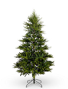 7Ft Fraser Fir Lit Tree, , catlanding