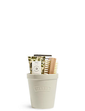 Plant Pot Gift Set, NO COLOUR, catlanding