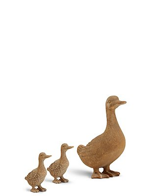 Duck Family, , catlanding