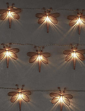 Dragonfly Lights, , catlanding