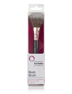 Blush Brush, , catlanding