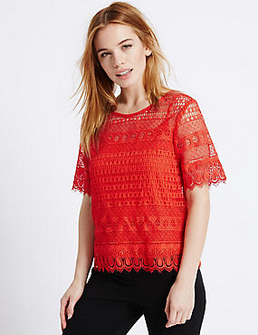 PETITE All Over Lace Half Sleeve Jersey Top, BRIGHT ORANGE, catlanding