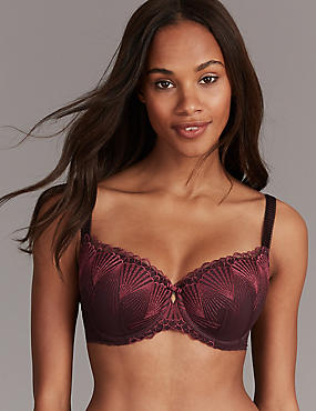 Embroidered Padded Balcony Bra A-E, DARK GRAPE, catlanding