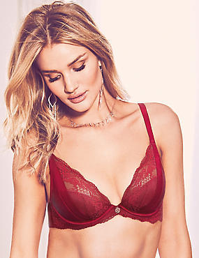 Lace Padded Plunge Bra A-E with Silk, DARK RED, catlanding