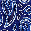 Pure Silk Paisley Print Tie, BLUE MIX, swatch