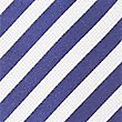 Pure Silk Striped Tie, NAVY/WHITE, swatch