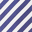 Pure Silk Striped Tie, NAVY/WHITE, swatch