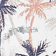Pure Cotton Palm Tree Print Shirt, POPPY, swatch